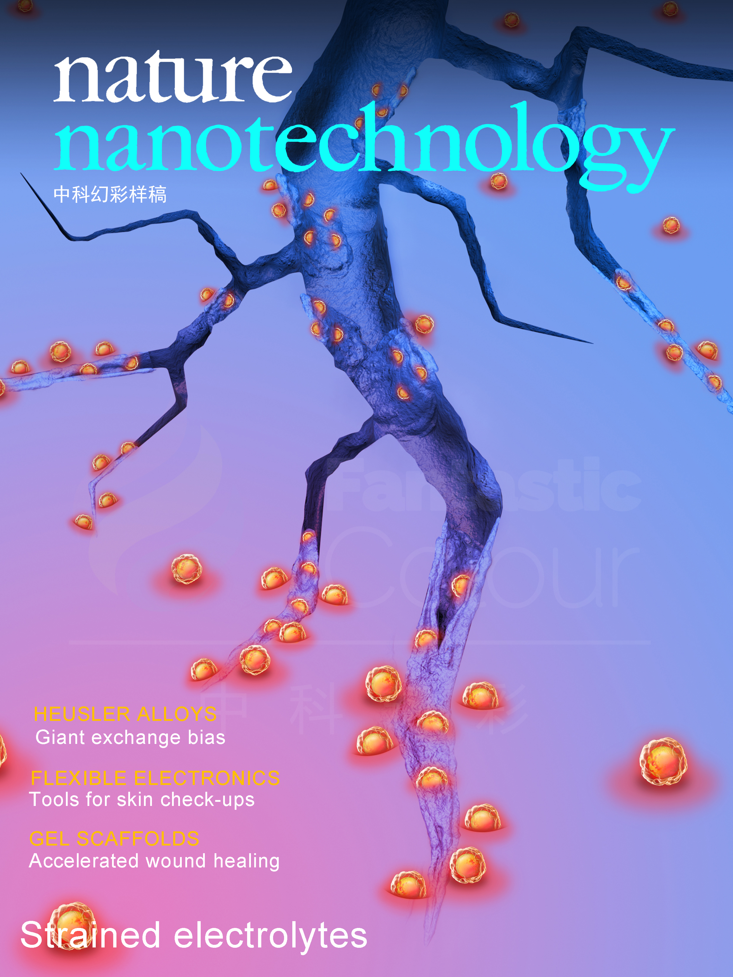 Nature Nanotechnology (Nat. Nano.)