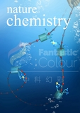 Nature Chemisitry (Nat. Chem.)